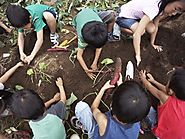 Earth Day: Lesson Plans, Reading Lists, and Classroom Ideas