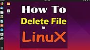 Delete File in Linux by using command and GUI | Online Tutorial