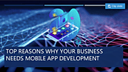 Top Reasons Why Your Business Needs Mobile App Development
