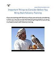 Important Things to Consider Before You Bring Start Falconry Training