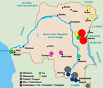 3 Key Tactics in Conflict Minerals Compliance and Staying in DRC
