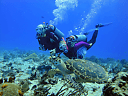 HOW WELL ARE YOU PREPARED FOR YOUR SCUBA DIVING TRIP?