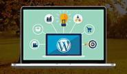 PSD To WordPress Conversion Service - MagicByte Solutions