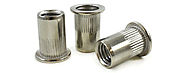 Rivet Nuts manufacturers in India -Sachiya Steel International