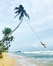 The Rope Swing at Dalawella Beach