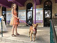 A Dog Friendly Hemisfair Adventure - Where All People Come to Meet - PLACES FOR PUPS