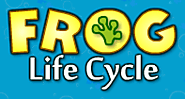Frog Life Cycle | Animal Game | Turtle Diary