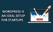 WordPress is an Ideal Setup for Startups | Pellucid Solution