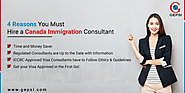 Reasons To Higher Professional Immigration Consultant