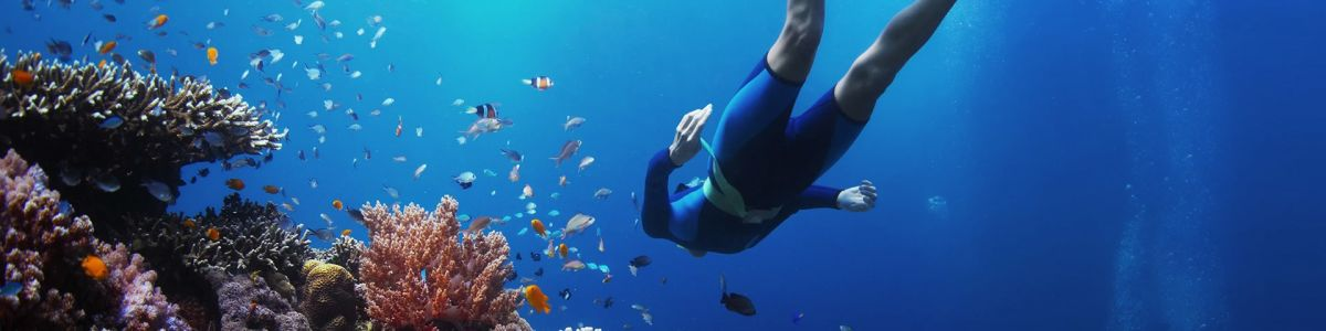 Headline for Scuba Diving Tips - For the first timer