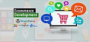 Key Ingredients for Effective Mobile eCommerce Websites | Pellucid Solution