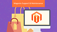Magento Support & Maintenance | Pellucid Solution