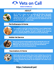 Vets on Call - Mobile Vet Services in Gold Coast and Melbourne