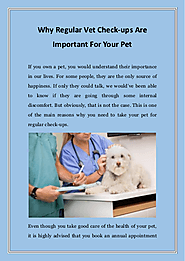 Why Regular Vet Check-ups Are Important For Your Pet