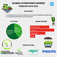 Hydroponics Market Size, Share, Trends, Growth, Industry Analysis and Forecast to 2025