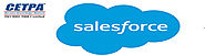 Best Salesforce Training Institute and Placement in Noida - CETPA : powered by Doodlekit