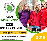 STEM Winter Camp