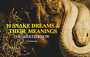 10 Snake Dream Meanings You Should Know - Snake Dream Interpretation