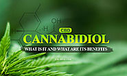 What is Cannabidiol (CBD) And What Are Its Significant Benefits?- FAQ's about Cannabidiol (CBD)