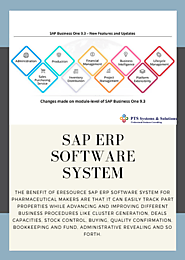 SAP ERP Software System