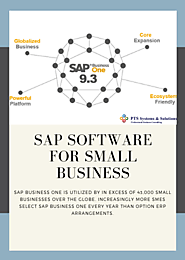 SAP Software For Small Business