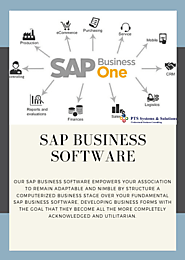 SAP Business Software