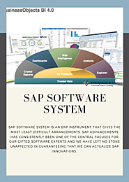 SAP Software System