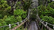 Heaphy Track, South Island