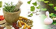 Salvus Pharma is the solution for starting franchise of Ayurvedic Products