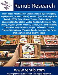 Plant Based Meat Market, Global Analysis by Source and Forecast 2019-2025