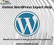 Wordpress Technical Online Experts