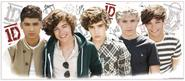 "One Direction Giant Wall Decal Cutout 16.75""x39"""
