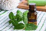 What is Peppermint Hydrosol and how it can revitalize one's health?