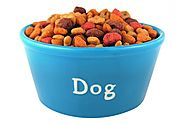 5 Best Dog Food to Prevent Gas (Cost-effective solution for all breeds)