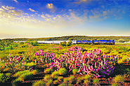Australian Rail Holidays & Tours | Rail Holiday Packages
