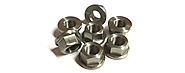 Flange Nuts manufacturers in India -Sachiya Steel International