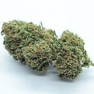 Pureflower Green Marijuana