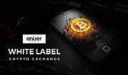 Get your white label crypto exchange within 3 weeks