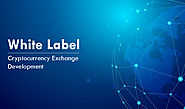 High-quality white label cryptocurrency exchange development solutions