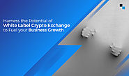 White label cryptocurrency exchange software: Why build it?