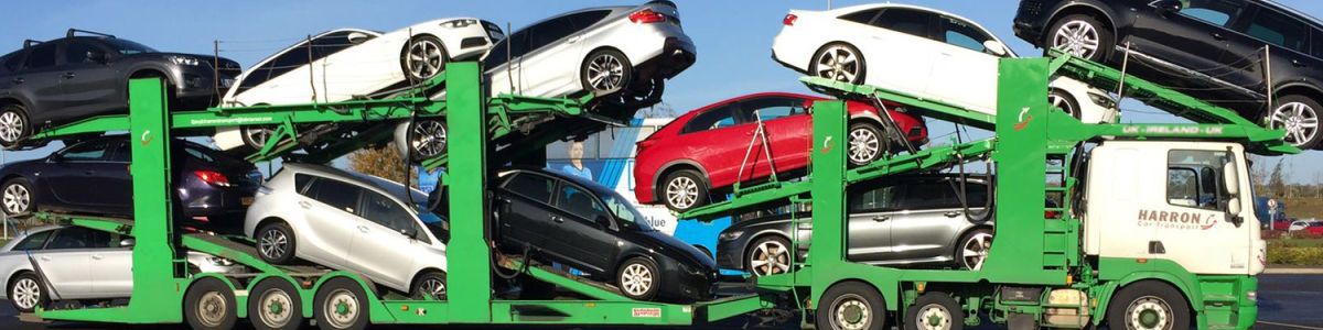 Headline for Dealers Choice Auto Transport
