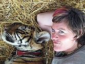 Cuddle a tiger