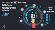 What exactly does SEO companies in Pune do. - Edigibrands Blog