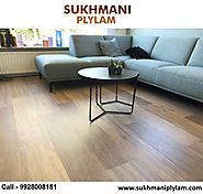 Plywood Showroom in Udaipur