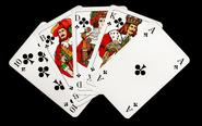 Online poker - A great option to learn and become a professional player