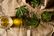 CBD Oil Therapy