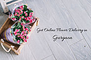 Get Free Online Flower Delivery in Gurgaon by Floraindia » Dailygram ... The Business Network