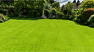 Steps to Fertilize Your New Jersey Lawn - Royal Landscapes - Medium