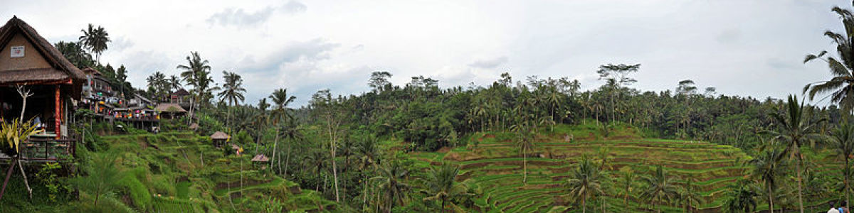 Headline for Top 7 less commonly known places to visit in Ubud - For a truly delightful experience!