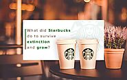 How Training Saved Starbucks From Its Extinction | Knorish